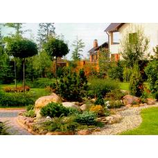 Фен-шуй в саду